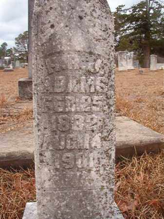 ADAMS, H R J - Nevada County, Arkansas | H R J ADAMS - Arkansas Gravestone Photos