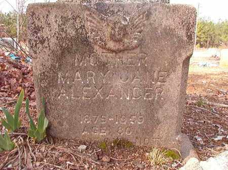 ALEXANDER, MARY JANE - Nevada County, Arkansas | MARY JANE ALEXANDER - Arkansas Gravestone Photos