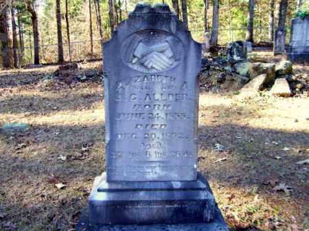 ALLDER, ELIZABETH A. - Nevada County, Arkansas | ELIZABETH A. ALLDER - Arkansas Gravestone Photos