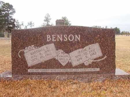 BENSON, JESSIE A - Nevada County, Arkansas | JESSIE A BENSON - Arkansas Gravestone Photos