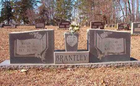 BRANTLEY, MILTON G - Nevada County, Arkansas | MILTON G BRANTLEY - Arkansas Gravestone Photos