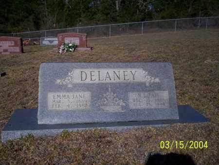DELANEY, N.L. - Nevada County, Arkansas   N.L. DELANEY - Arkansas Gravestone Photos