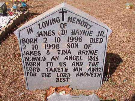 HAYNIE, JR, JAMES D - Nevada County, Arkansas | JAMES D HAYNIE, JR - Arkansas Gravestone Photos