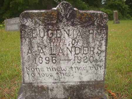 LANDERS, EUGENIA H - Nevada County, Arkansas   EUGENIA H LANDERS - Arkansas Gravestone Photos