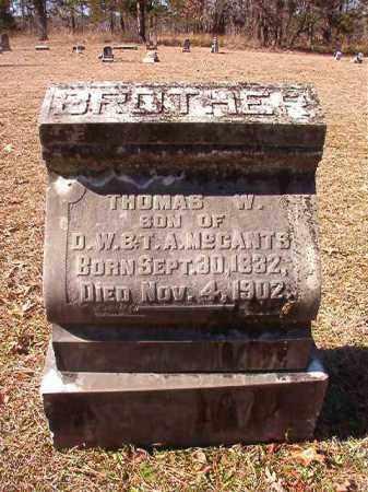 MCCANTS, THOMAS W - Nevada County, Arkansas   THOMAS W MCCANTS - Arkansas Gravestone Photos