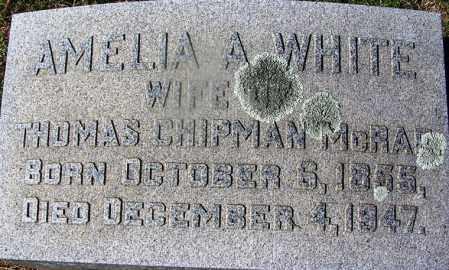 WHITE MCRAE, AMELIA A - Nevada County, Arkansas | AMELIA A WHITE MCRAE - Arkansas Gravestone Photos