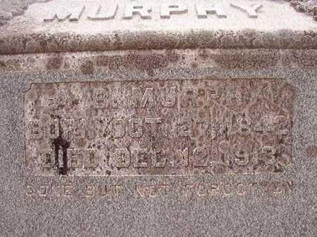 MURPHY, ASBURRY B (BIO) - Nevada County, Arkansas   ASBURRY B (BIO) MURPHY - Arkansas Gravestone Photos