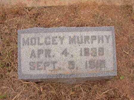 MURPHY, MOLCEY - Nevada County, Arkansas | MOLCEY MURPHY - Arkansas Gravestone Photos