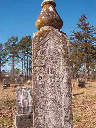 PIERCY, JIM - Nevada County, Arkansas | JIM PIERCY - Arkansas Gravestone Photos
