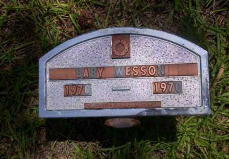 WESSON, BABY - Nevada County, Arkansas | BABY WESSON - Arkansas Gravestone Photos
