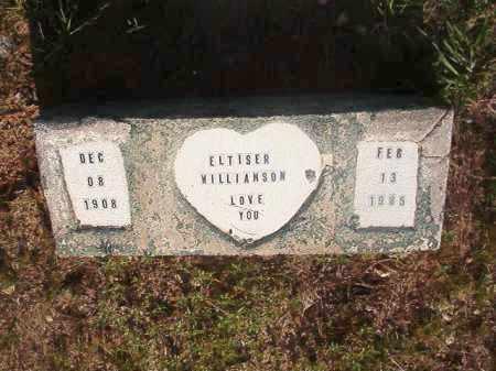 WILLIAMSON, ELTISER - Nevada County, Arkansas   ELTISER WILLIAMSON - Arkansas Gravestone Photos