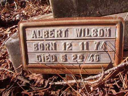 WILSON, ALBERT - Nevada County, Arkansas | ALBERT WILSON - Arkansas Gravestone Photos