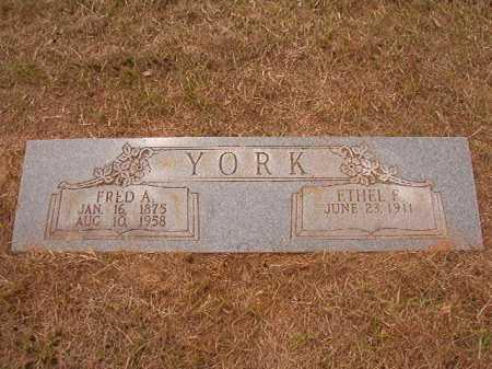 YORK, FRED A - Nevada County, Arkansas | FRED A YORK - Arkansas Gravestone Photos