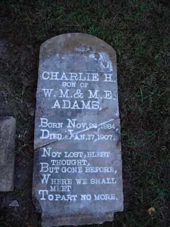 ADAMS, CHARLIE H. - Newton County, Arkansas | CHARLIE H. ADAMS - Arkansas Gravestone Photos