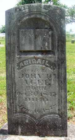 AGEE, ABIGAIL - Newton County, Arkansas | ABIGAIL AGEE - Arkansas Gravestone Photos