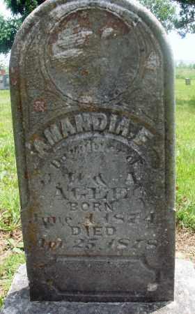 AGEE, AMANDIA F - Newton County, Arkansas   AMANDIA F AGEE - Arkansas Gravestone Photos