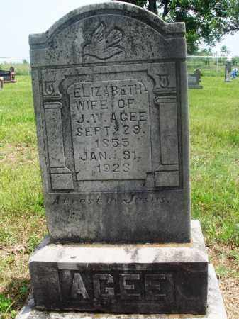 AGEE, ELIZABETH - Newton County, Arkansas | ELIZABETH AGEE - Arkansas Gravestone Photos