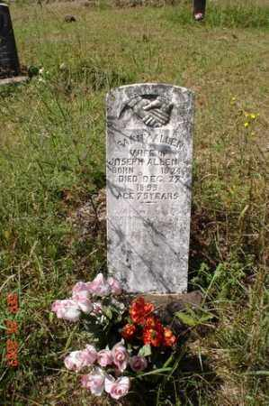 HAGINS ALLEN, FANNIE - Newton County, Arkansas | FANNIE HAGINS ALLEN - Arkansas Gravestone Photos