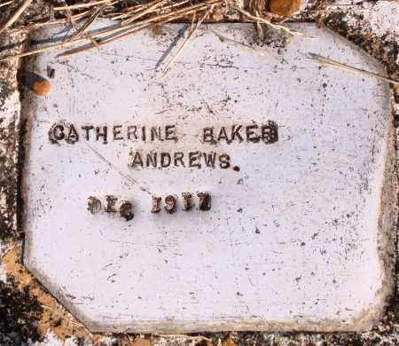 ANDREWS, CATHERINE - Newton County, Arkansas | CATHERINE ANDREWS - Arkansas Gravestone Photos