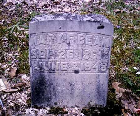 BEAN, MARY FRANCIS - Newton County, Arkansas   MARY FRANCIS BEAN - Arkansas Gravestone Photos