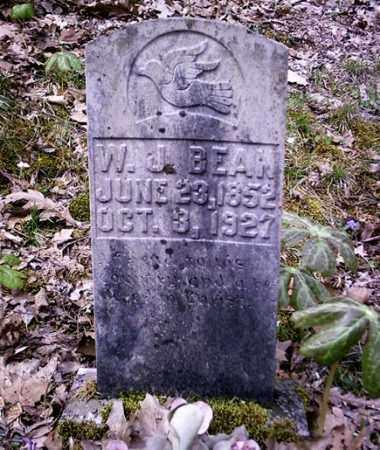 BEAN, WILLIAM JAMES - Newton County, Arkansas | WILLIAM JAMES BEAN - Arkansas Gravestone Photos