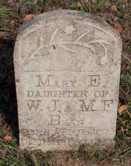 BEAN, MARY E. - Newton County, Arkansas | MARY E. BEAN - Arkansas Gravestone Photos
