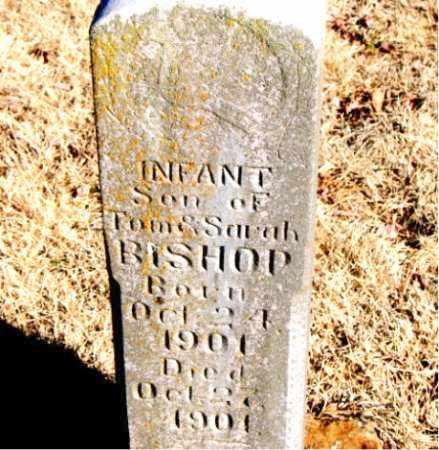 BISHOP, INFANT SON - Newton County, Arkansas | INFANT SON BISHOP - Arkansas Gravestone Photos