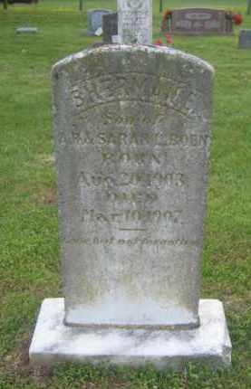 BOEN, SHERMAN E. - Newton County, Arkansas | SHERMAN E. BOEN - Arkansas Gravestone Photos
