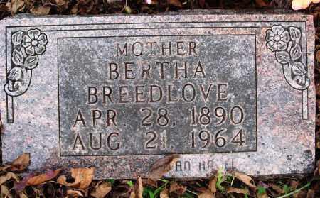 DAVIS BREEDLOVE, BERTHA - Newton County, Arkansas | BERTHA DAVIS BREEDLOVE - Arkansas Gravestone Photos