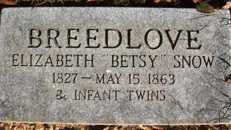 BREEDLOVE, INFANT TWINS - Newton County, Arkansas | INFANT TWINS BREEDLOVE - Arkansas Gravestone Photos