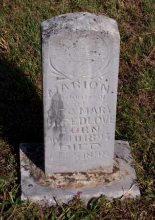 BREEDLOVE, MARION - Newton County, Arkansas   MARION BREEDLOVE - Arkansas Gravestone Photos