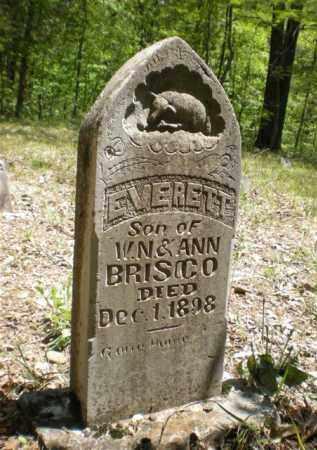 BRISCO, EVERETT - Newton County, Arkansas | EVERETT BRISCO - Arkansas Gravestone Photos