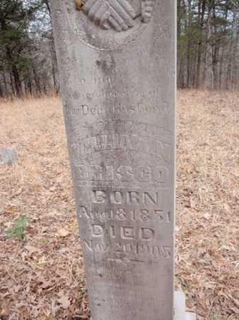 BRISCO, WILLIAM N. - Newton County, Arkansas   WILLIAM N. BRISCO - Arkansas Gravestone Photos