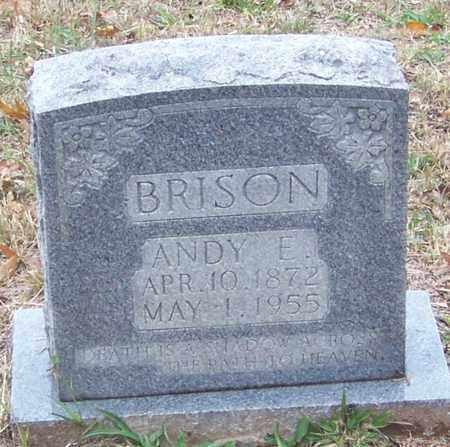 BRISON, ANDY E - Newton County, Arkansas | ANDY E BRISON - Arkansas Gravestone Photos