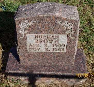 BROWN, NORMAN - Newton County, Arkansas | NORMAN BROWN - Arkansas Gravestone Photos