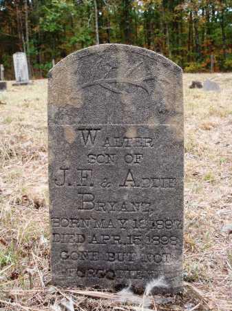 BRYANT, WALTER - Newton County, Arkansas | WALTER BRYANT - Arkansas Gravestone Photos
