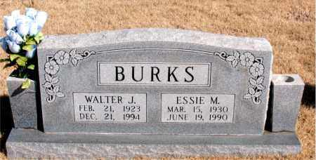 BURKS, WALTER J. - Newton County, Arkansas | WALTER J. BURKS - Arkansas Gravestone Photos