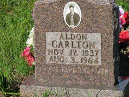 CARLTON, ALDON - Newton County, Arkansas | ALDON CARLTON - Arkansas Gravestone Photos