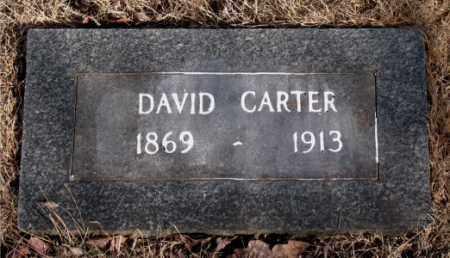 CARTER, DAVID - Newton County, Arkansas | DAVID CARTER - Arkansas Gravestone Photos