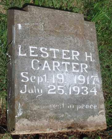 CARTER, LESTER H - Newton County, Arkansas   LESTER H CARTER - Arkansas Gravestone Photos