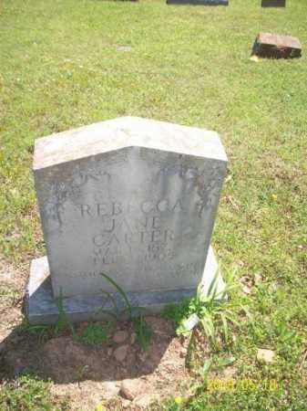JACKSON CARTER, REBECCA JANE - Newton County, Arkansas | REBECCA JANE JACKSON CARTER - Arkansas Gravestone Photos