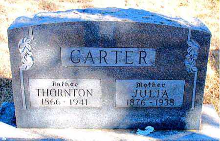CARTER, THORNTON - Newton County, Arkansas | THORNTON CARTER - Arkansas Gravestone Photos