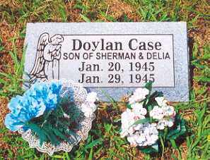 CASE, DOYLAN - Newton County, Arkansas   DOYLAN CASE - Arkansas Gravestone Photos