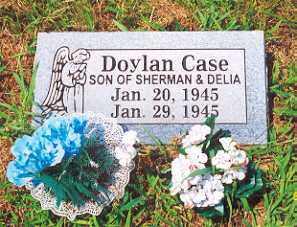 CASE, DOYLAN - Newton County, Arkansas | DOYLAN CASE - Arkansas Gravestone Photos