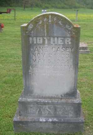 CASEY, PRISCILLA JANE - Newton County, Arkansas | PRISCILLA JANE CASEY - Arkansas Gravestone Photos