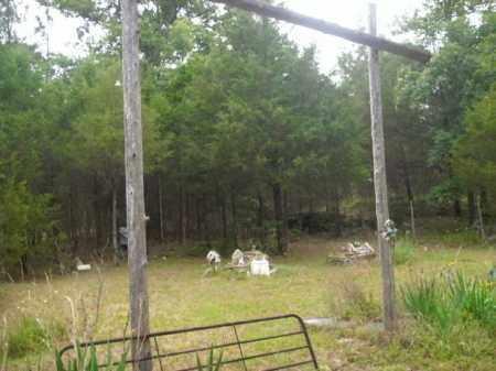 *CEDAR CEMETERY OVERVIEW,  - Newton County, Arkansas    *CEDAR CEMETERY OVERVIEW - Arkansas Gravestone Photos