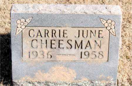 CHEESMAN, CARRIE JUNE - Newton County, Arkansas | CARRIE JUNE CHEESMAN - Arkansas Gravestone Photos