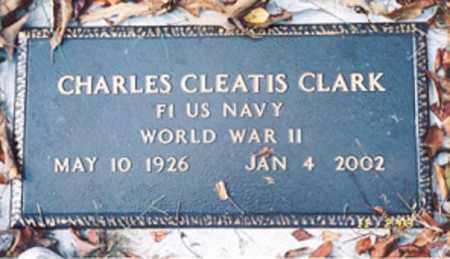 CLARK  (VETERAN WWII), CHARLES CLEATIS - Newton County, Arkansas | CHARLES CLEATIS CLARK  (VETERAN WWII) - Arkansas Gravestone Photos