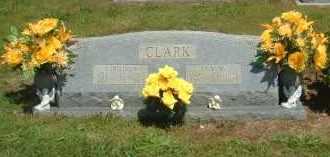 CLARK, VIRGINIA - Newton County, Arkansas | VIRGINIA CLARK - Arkansas Gravestone Photos