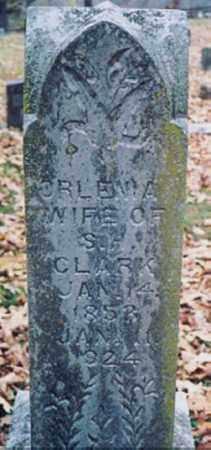 CLARK, ORLENA - Newton County, Arkansas   ORLENA CLARK - Arkansas Gravestone Photos